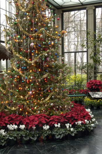 The Magic of a Winterthur Christmas | Winterthur Museum & Library Blog